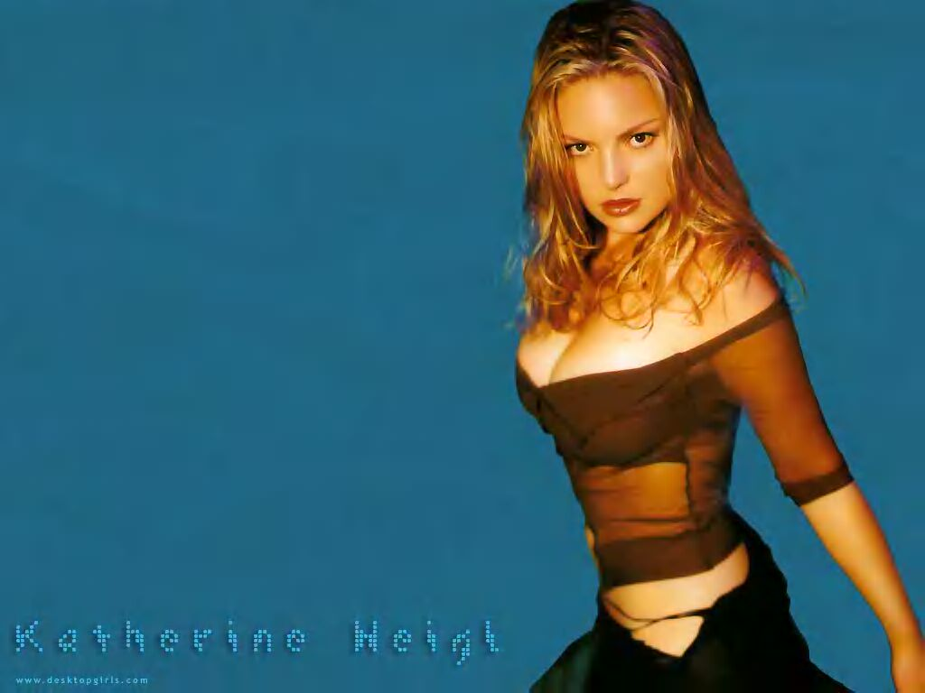 http://www.gretoville.com/photogallery/photo_movie_topten/katherine_heigl_wallpaper01.jpg